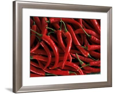 Thai Chili Peppers--Framed Photographic Print