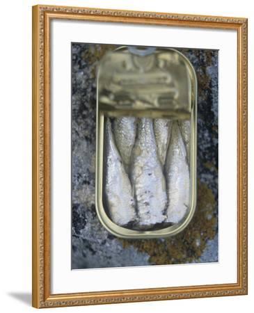 Sardines in a Tin-Joerg Lehmann-Framed Photographic Print
