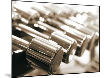 Row of Dumbbells--Mounted Photographic Print