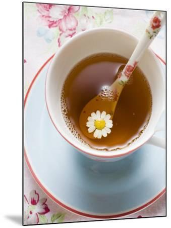 Chamomile Tea in Cup with Spoon--Mounted Photographic Print