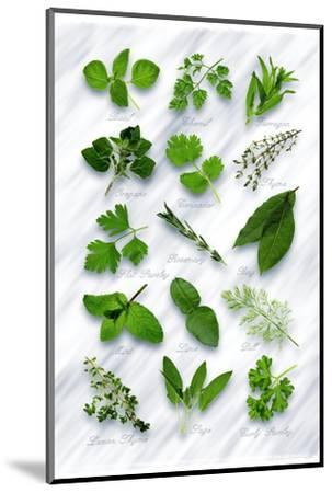 Various Herbs on Marble-Peter Howard Smith-Mounted Photographic Print