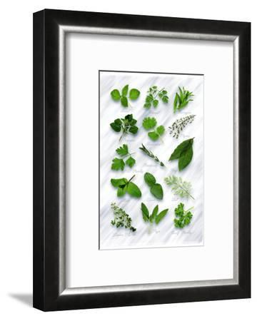 Various Herbs on Marble-Peter Howard Smith-Framed Photographic Print