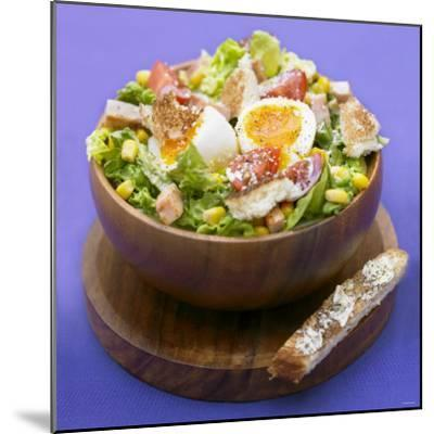 Mixed Salad with Chicken Breast and Egg-Bernard Radvaner-Mounted Photographic Print
