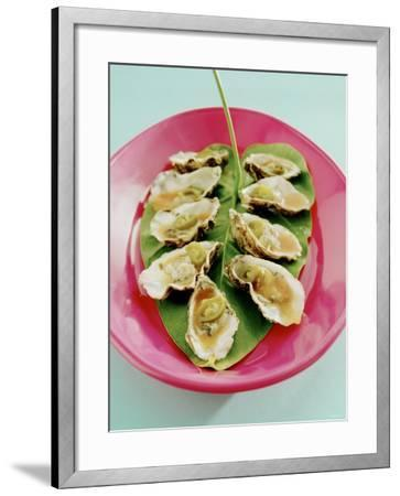 Oysters with Tomato Oil and Jalapeno (Chili Rings)-Alexander Van Berge-Framed Photographic Print