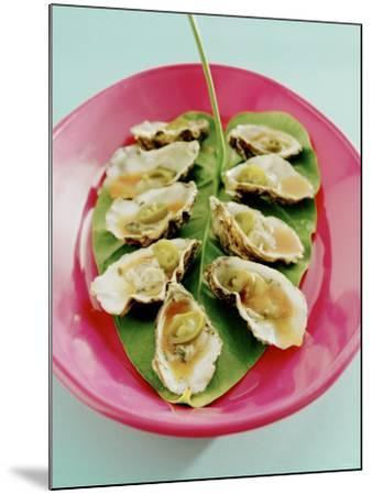 Oysters with Tomato Oil and Jalapeno (Chili Rings)-Alexander Van Berge-Mounted Photographic Print