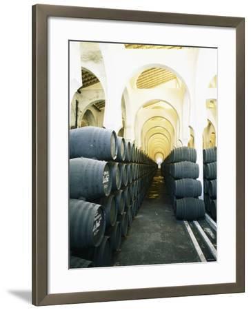 La Mezquita Winery (Jerez de la Frontera, Spain)-Hendrik Holler-Framed Photographic Print