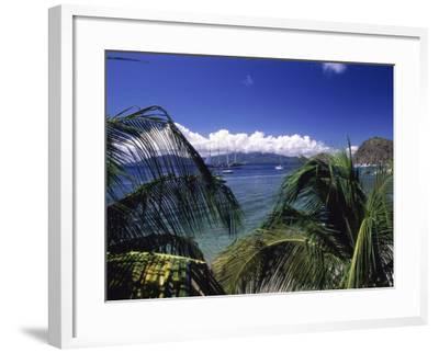 Iles Des Saintes, Guadeloupe--Framed Photographic Print