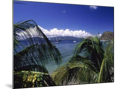 Iles Des Saintes, Guadeloupe--Mounted Photographic Print