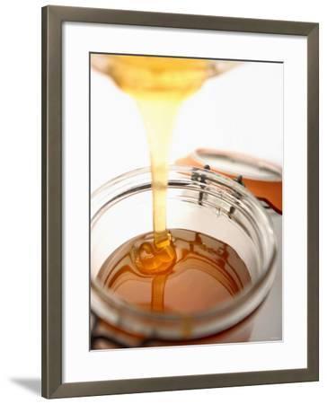 Organic Honey Running into a Honey Jar-Paul Blundell-Framed Photographic Print