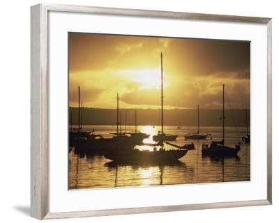 San Diego, California, USA--Framed Photographic Print
