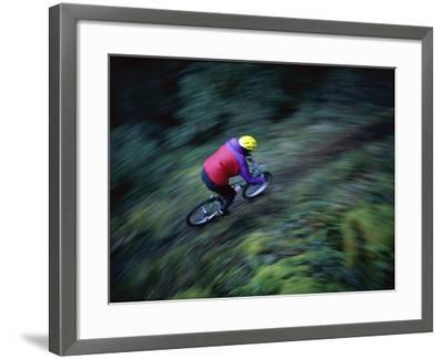 Sierras, California, USA--Framed Photographic Print