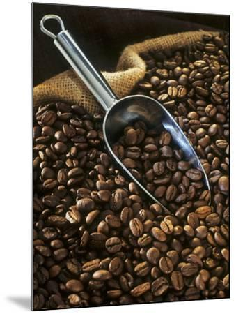 Coffee Beans with Metal Scoop in Sack-Vladimir Shulevsky-Mounted Photographic Print