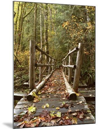 Olympic National Park, Washington, USA--Mounted Photographic Print