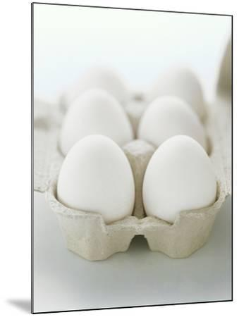 A Carton of Six White Eggs--Mounted Photographic Print