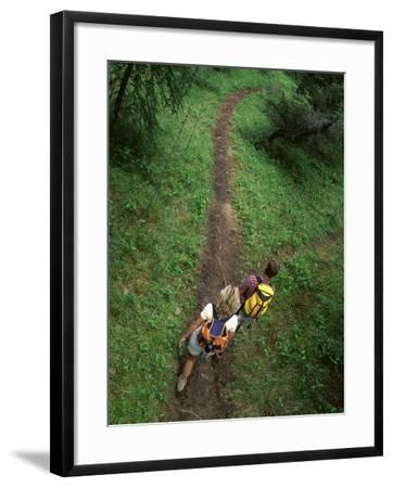 High Angle View of a Young Couple Hiking on a Forest Trail--Framed Photographic Print