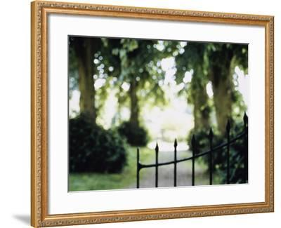 Blurred Image of a Gate and Woodland Path--Framed Photographic Print