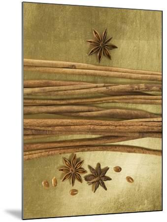 Christmas Spices (Cinnamon Sticks and Star Anise)-Achim Sass-Mounted Photographic Print