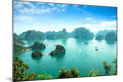 Halong Bay in Vietnam. Unesco World Heritage Site.-cristaltran-Mounted Photographic Print