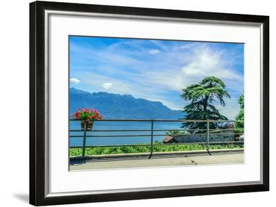 The UNESCO World Heritage Site of the Lavaux Vineyards near Lausanne in Switzerland.- albinhillert-Framed Photographic Print