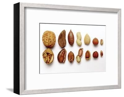 Various Nuts, Shelled and Unshelled-Eising Studio - Food Photo and Video-Framed Photographic Print