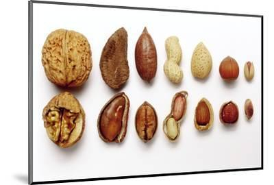 Various Nuts, Shelled and Unshelled-Eising Studio - Food Photo and Video-Mounted Photographic Print