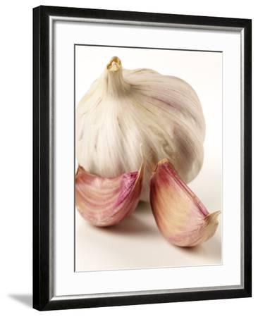 Garlic and Garlic Cloves- Joff Lee Studios-Framed Photographic Print