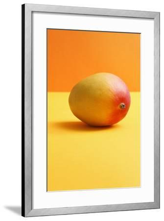 Mango on Coloured Background--Framed Photographic Print