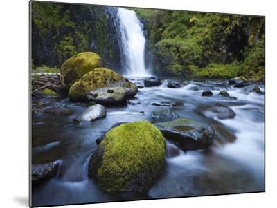 Seven Mile Falls, Eagle Creek, Oregon-Ethan Welty-Mounted Photographic Print