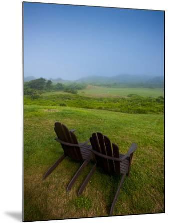 Adirondack Chairs on Lawn at Martha's Vineyard with Fog over Trees in the Distant View-James Shive-Mounted Photographic Print