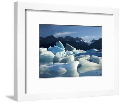 Icebergs Floating in Alsek Lake. Glacier Bay National Park, Ak.-Justin Bailie-Framed Photographic Print
