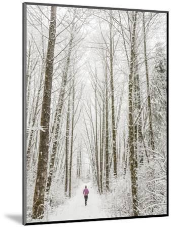 Winter Trail Running-Steven Gnam-Mounted Photographic Print