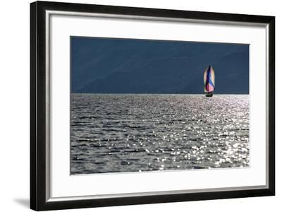 Spinnaker Sailing in British Columbia-Dave Heath-Framed Photographic Print