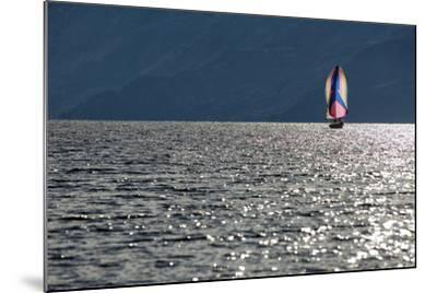 Spinnaker Sailing in British Columbia-Dave Heath-Mounted Photographic Print