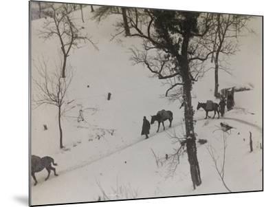 Transport of Supplies During the First World War-Luigi Verdi-Mounted Photographic Print