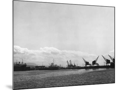 Crane on the Port of Rijeka (River)-Dusan Stanimirovitch-Mounted Photographic Print