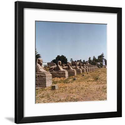 The Avenue of the Sphinx at the Temple of Luxor-Pietro Ronchetti-Framed Photographic Print
