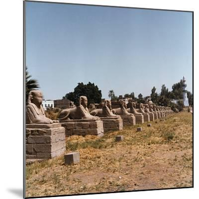 The Avenue of the Sphinx at the Temple of Luxor-Pietro Ronchetti-Mounted Photographic Print
