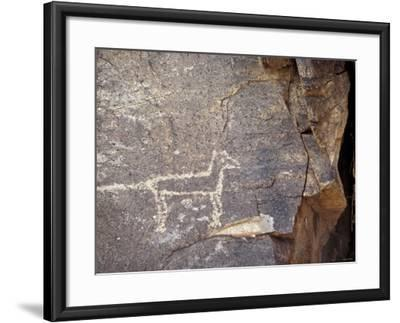Native American Petroglyph of a Coyote or a Wolf Near Galisteo, New Mexico--Framed Photographic Print