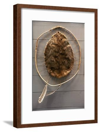 Beaver Pelt Stretched on a Sapling Frame and Laced with Rawhide--Framed Photographic Print