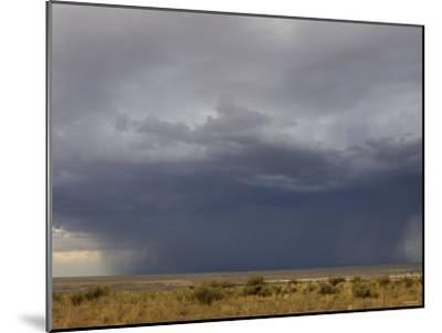 Rainstorm over the Arid Plains of the Four Corners Area, New Mexico--Mounted Photographic Print