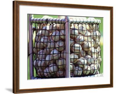Baseballs--Framed Photographic Print