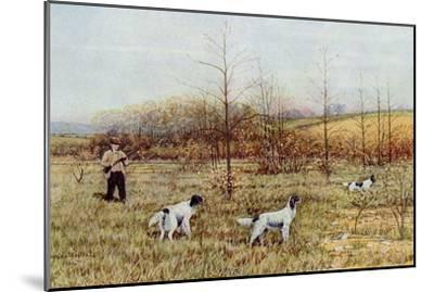 Bird Hunter with His Setters in the Field, Circa 1900--Mounted Photographic Print