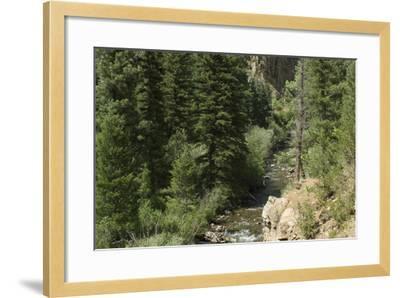 Rio Del Pueblo in the Sangre De Cristo Mountains, New Mexico--Framed Photographic Print