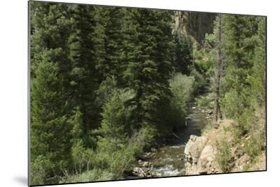 Rio Del Pueblo in the Sangre De Cristo Mountains, New Mexico--Mounted Photographic Print