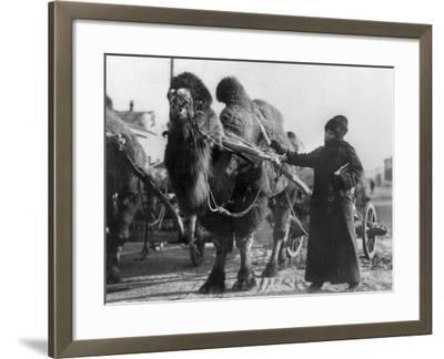 Harriet Chalmers Adams--Framed Photographic Print
