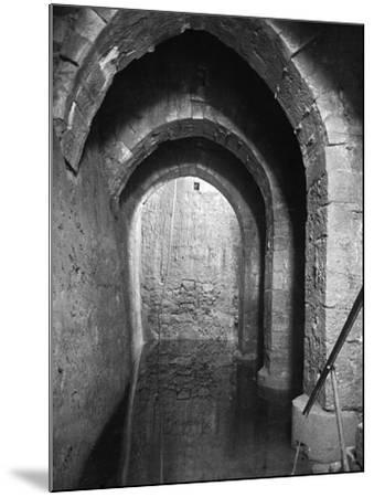 Pool Of Bethesda--Mounted Photographic Print