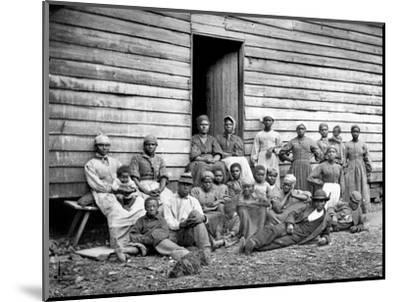 Civil War: Freed Slaves--Mounted Photographic Print