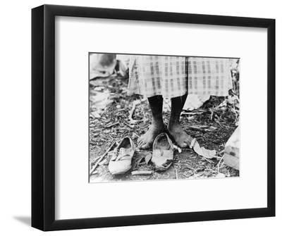 Cotton Picker, 1937-Dorothea Lange-Framed Photographic Print