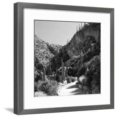 Cliff Dwellings of Tonto National Monument, Arizona,USA-Anna Miller-Framed Photographic Print