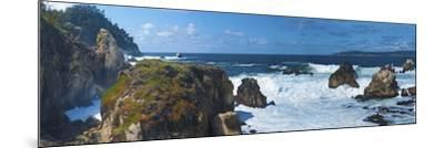 Rugged Coast in Point Lobos State Park, CAlifornia-Anna Miller-Mounted Photographic Print